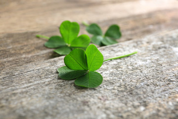 Green clover leaves on wooden background, closeup