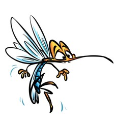 Insect mosquito cartoon illustration isolated image