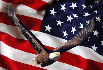 Bandiera Americana con aquila in volo