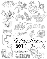 Hand drawn set with caterpillars, worms and pests