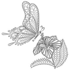 Hand drawn zentangle tribal flying Butterfly and Hibiskus flower