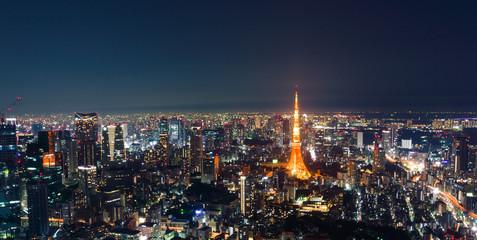 Tokyo Tower View at Night