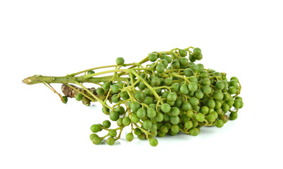 Szechuan pepper (Zanthoxylum piperitum), fruits isolated against