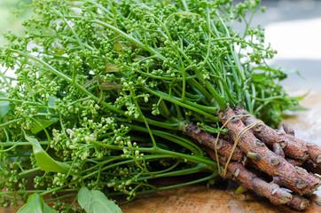 Organic Neem from Natural Farm.