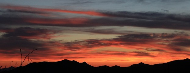 Beautiful Arizona Desert Sunset
