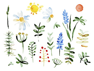 Collection of hand drawn flowers. Elements for your design.  Vector watercolor