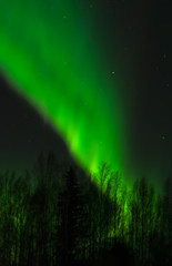 Walll of Green Aurora