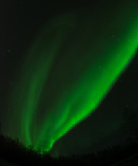 Twin forks of green aurora