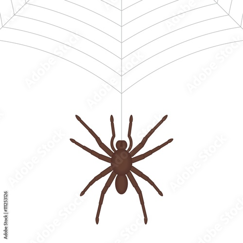 """""""Spider hanging on web."""" Stock image and royalty-free ..."""