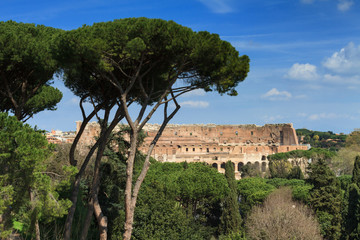 Wall Mural - Coliseum as seen from the Palatine hill