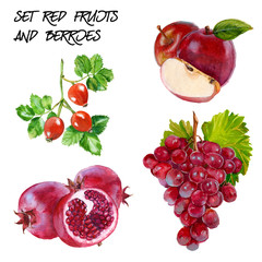 Set with red grapes, red apple, rosehip and pomegranate branch.