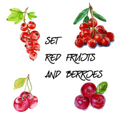 Set with red mountain ash, cherry, red currant and cranberry. is