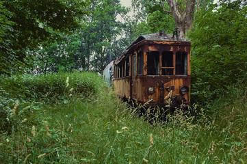 eine alte Straßenbahn die Verlassen ohne Energie überwuchert von Pflanzen im Wald steht