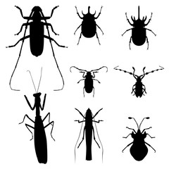 insect silhouette illustration vector set