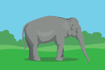 elephant single isolated with tree and bush background vector graphic illustration