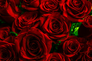 beautiful red roses close-up. festive bouquet. greeting card wit