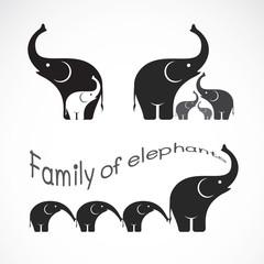 Vector image of family elephants on white background, Elephants