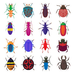 Insect bug icons set, cartoon style