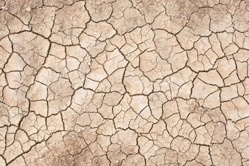 Dried land