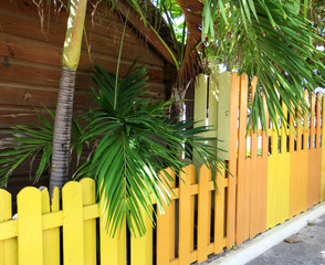 Colorful fencing and palm trees beside a house in Ocho Rios, Jamaica.