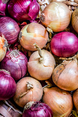 Onions and red onions