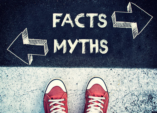 Myth and fact about SEO