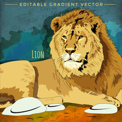 Wild Cats. Lion