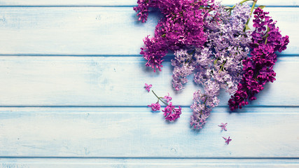 Fresh aromatic lilac flowers on blue wooden planks.