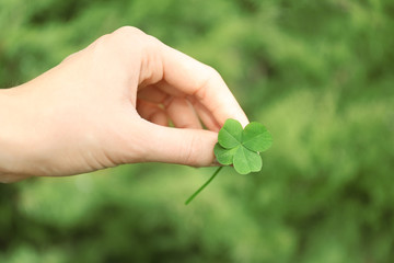 Female hand holding clover leaf on meadow background