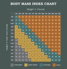 Body Mass Index chart - height an weight infographic