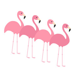 Four pink flamingo set. Exotic tropical bird. Zoo animal collection. Cute cartoon character. Decoration element. Flat design. White background. Isolated.