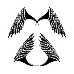 hand drawn wings with decorative graphic elements Vector Illustration