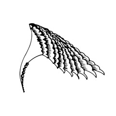 hand drawn wing with decorate graphic elements Vector Illustratition
