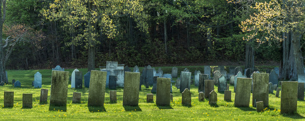 rows of gravestones from the 1800s  in old remote rural graveyard   Wall mural