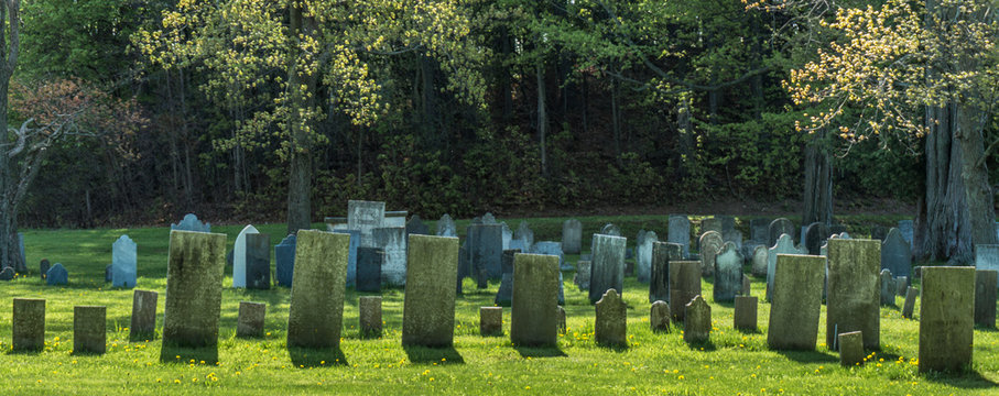 rows of gravestones from the 1800s  in old remote rural graveyard