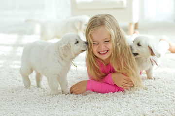 Little kid are playing with labrador puppies