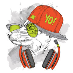 The image of the fox in the glasses, headphones and in hip-hop hat. Vector illustration.