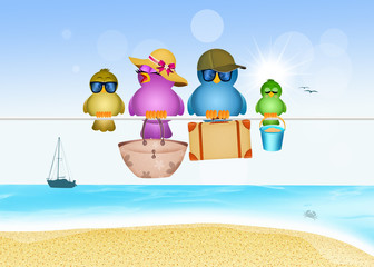 birds family on summer vacations