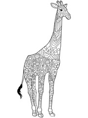 Giraffe coloring book vector for adults