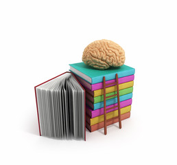 brain training concept lies on a pile of books and a wooden stai