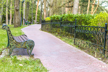 wooden bench in park,