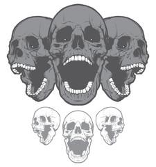 Skulls. Design elements