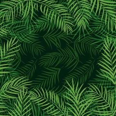 frame tropical palm leaf