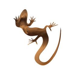 Beautiful sand lizard, lizard silhouette. Vector