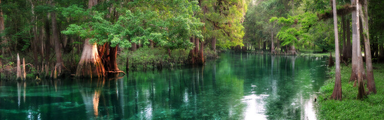 Wall Murals Panorama Photos Florida spring-fed river panorama