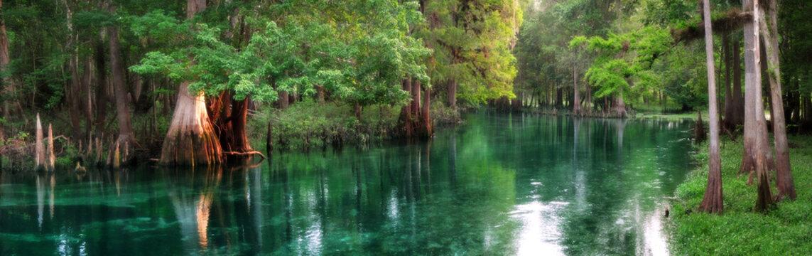 Florida spring-fed river panorama