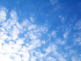 Cirrus clouds in a sunrise