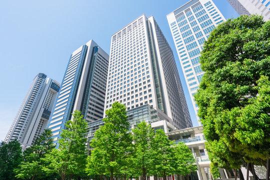 東京 品川 高層ビル 新緑