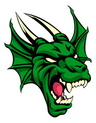 Dragon Mean Animal Mascot