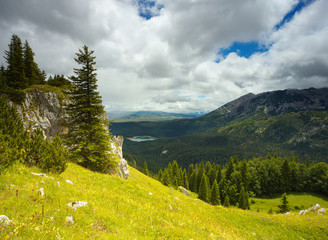 Mountain Meadow in Durmitor, Montenegro